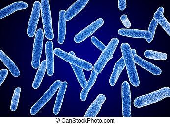 macro, bacterias