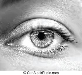 Macro de ojos femeninos grises. Vector