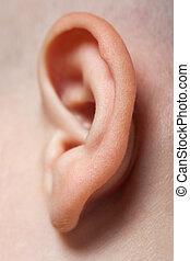 Macro de oreja