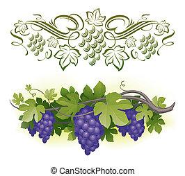 maduro, y, -, vid, ilustración, calligraphic, vector, decorarative, uvas