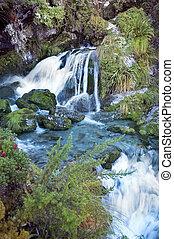Magnífico paisaje fabuloso en Nueva Zelanda