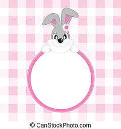 Maldito conejo