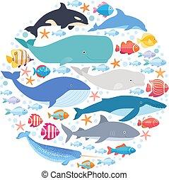 mamíferos marinos y peces en círculo. Narval, ballena azul, delfín, ballena beluga, ballena jorobada, arco y vector de ballena aislada