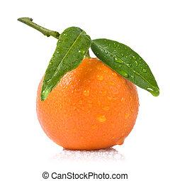 Mandarina con hojas verdes y gotas de agua en blanco