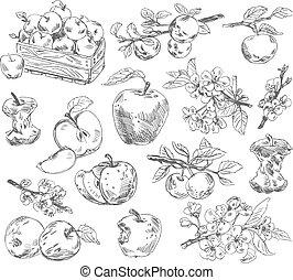 Mano libre dibujando manzanas