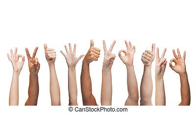 manos arriba, aprobar, actuación, paz, pulgares, humano, señales