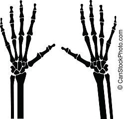 manos, radiografía