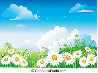 Manzanilla en el cielo azul
