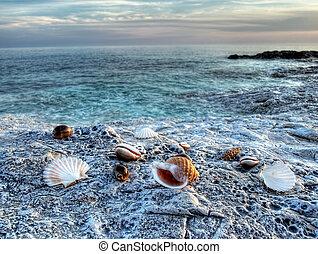 Mar adriático 2