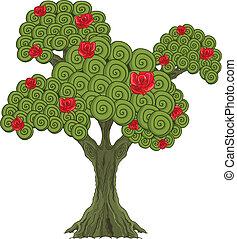 maravilla, árbol