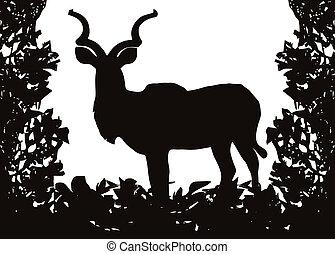 marco, arbusto, aislado, (koedoe), vector, kudu