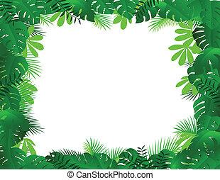 marco, bosque