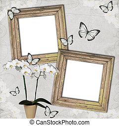 marcos, plano de fondo, de madera, mariposa, finca, orquídeas