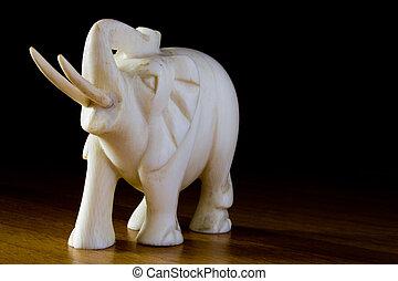 marfil, elefante