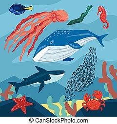 marina, estrellas de mar, fauna, habitantes, ilustración, vida, ballena, cangrejo, océano, mar, pulpo, vector, peces