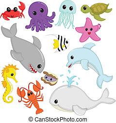marina, fauna, animales