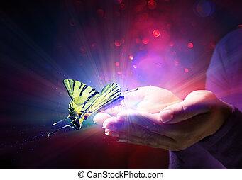 Mariposa en manos, cuento de hadas