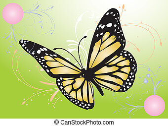 mariposa, imagen, vector