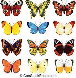 Mariposa lista