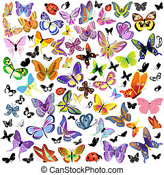 mariposa, mariquita, conjunto