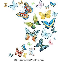 Mariposas acuarelas