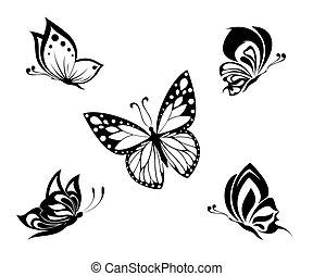 Mariposas blancas y negras