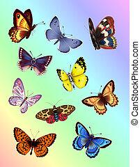 Mariposas brillantes