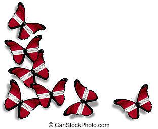Mariposas de bandera letonas, aisladas de fondo blanco