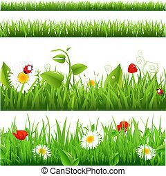 mariquita, flores, conjunto, fondos, pasto o césped