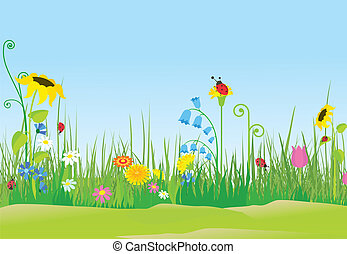 mariquitas, flor, pradera