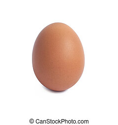 marrón, aislado, solo, huevo blanco, pollo