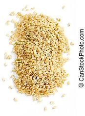 marrón, cortocircuito, arroz