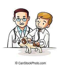mascota, doctor