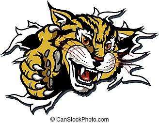 mascota, wildcat