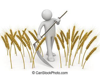 Masculinos, la colecta de los trabajadores de la agricultura