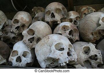 matanza, cráneo, campos