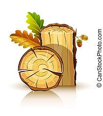 Material de madera de roble con hojas y bellotas