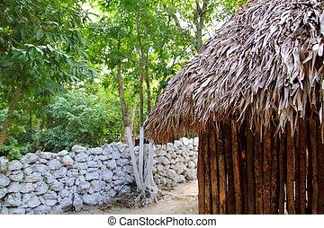 maya, mexicano, pared, casa, techo de palapa, choza, selva