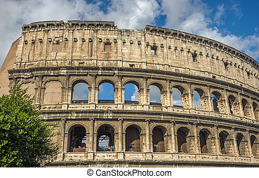 mayor, italia, turista, (coliseum), roma, atracción, coliseo