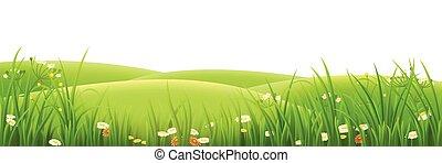 Meadow, hierba verde y flores