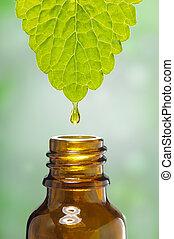 Medicina alternativa de hierbas