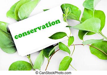 mensaje, conservación, hojas