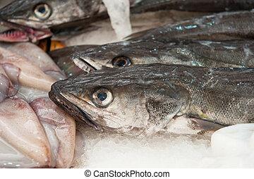 Merluza fresca en un mercado de pescado