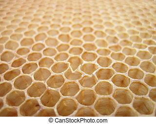 miel, cera de abejas, sin, textura