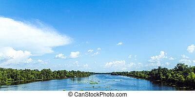 Mira al río Missisippi con su lecho de río ancha y su naturaleza intacta en Luisiana
