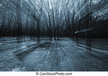 mistery, bosque