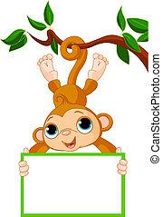 Mono bebé en un árbol en blanco