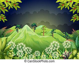 Montañas altas en el bosque oscuro