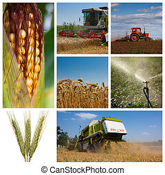 Montaje agrícola