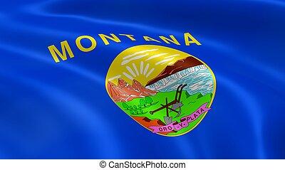 montanan, bandera, viento
